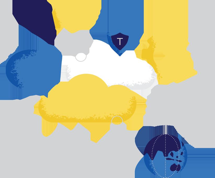 Salesforce Services | Trausteknik